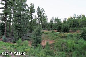 Beautiful .99 Acre Lot to Build your Dream Home in Starlight Ridge in Lakeside, Arizona