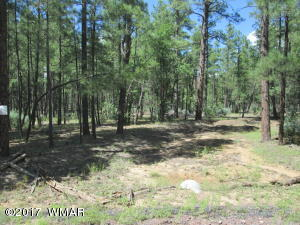 Lot D Rim Spur Road, Lakeside, AZ 85929