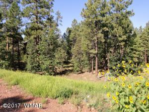 .42 Acre Lot to Build Your Dream Home or Vacation Getaway in the Desirable Subdivision of Top of the Woods in Pinetop.