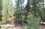 3052 Timber Line Road, Pinetop, AZ 85935