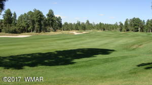 Large lot on the 17th fairway