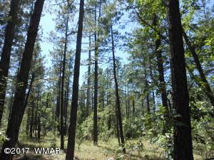 2060 S Pine Lake Road, Pinetop, AZ 85935