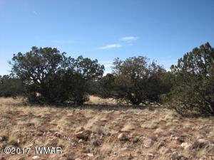 Lot 507 Chevelon Canyon Ranch #3, Overgaard, AZ 85933