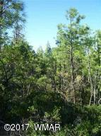 tbd Manzanita Trail