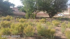 1005 N 8th, Holbrook, AZ 86025