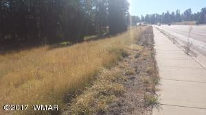1934 State Route 260, Overgaard, AZ 85933
