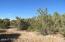 lot 307 Show Low Highlands, Vernon, AZ 85940