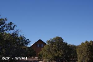 9996 E Buffalo Ridge Lane, White Mountain Lake, AZ 85912