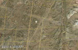 Lot 672 Ranch of the White Mountains, Concho, AZ 85924