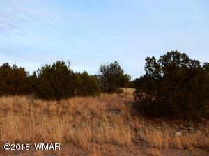 8546 Airport Drive, White Mountain Lake, AZ 85912