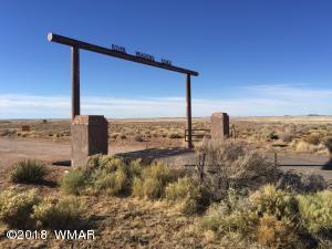 Lot 154 River Meadows Ranch, Concho, AZ 85924