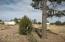 1108 Pearce Road, Show Low, AZ 85901
