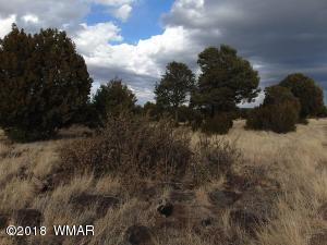 TBD Nevermind LnCedar Ridge Lot 73, Vernon, AZ 85940