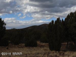 TBD 101 Puff Trail Cedar Ridge Lot 101, Vernon, AZ 85940