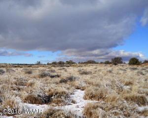 9743 Butler Trail, Snowflake, AZ 85937