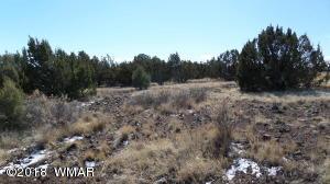8571 Bobcat Drive, Show Low, AZ 85901