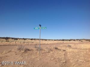 843 Old Meadow Ln., St. Johns, AZ 85936