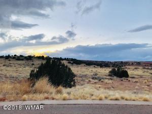 TBD Astante Drive, Snowflake, AZ 85937