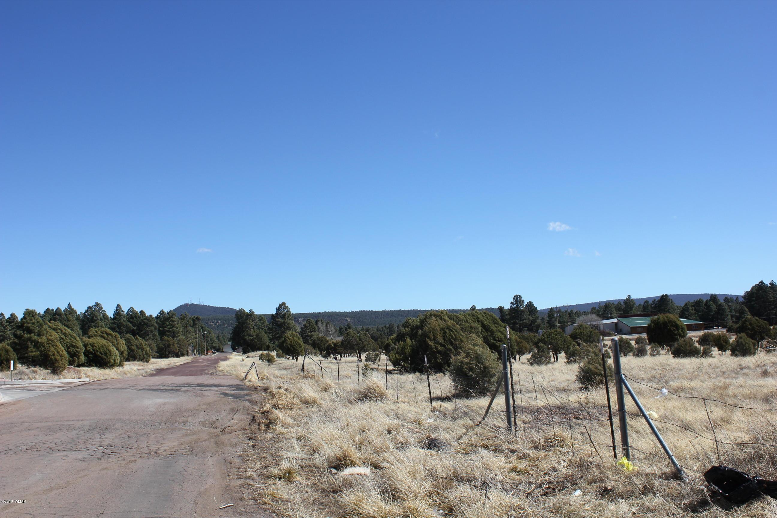 White Mountains, AZ Real Estate | Bev Best - HomeSmart