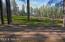 2883 Elk Road, Pinetop, AZ 85935