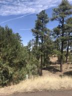 50 Timber Ridge Loop, Show Low, AZ 85901