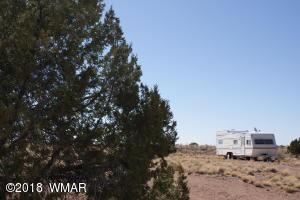 7538 Cedar Lane, Snowflake, AZ 85937