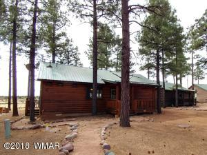 2723 High Pines Loop, Overgaard, AZ 85933