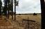 2723 High Pines Loop, Overgaard, AZ 85933