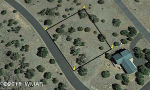 1927 Creekside Circle, Show Low, AZ 85901