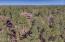 2075 E Ridge Drive, Pinetop, AZ 85935