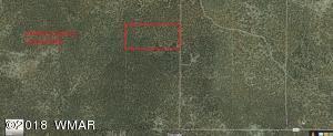 Lot 006B CR N8411, Concho, AZ 85924