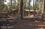 6603 Sunset Trail, Pinetop, AZ 85935
