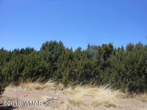 Lot 556 ACR 3036, Lot 557, Concho, AZ 85924