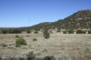 NA Picnic Creek Road, Springerville, AZ 85938