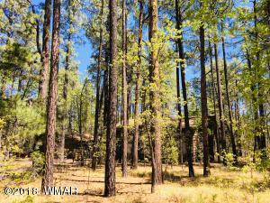 3680 Woodpecker Lane, Pinetop, AZ 85935