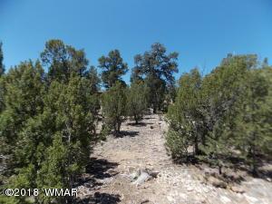 3367 Whisper Lane, Heber, AZ 85928