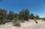 3326 Sawmill Ridge Loop, Heber, AZ 85928