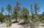 3341 Sawmill Ridge Loop, Heber, AZ 85928