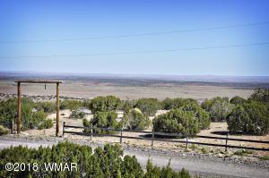 0000 Mesquite Drive, Concho, AZ 85924