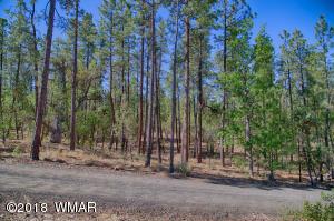 2838 S Pinewood Lane, Pinetop, AZ 85935