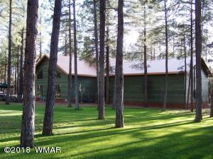 1413 N Springer Mountain Drive, Lakeside, AZ 85929