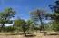 TBD E Rim Road, Pinetop, AZ 85935