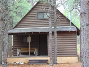 5307, 5309 Fs 219 Forest Servic, Pinedale, AZ 85934