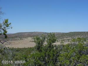 Lot 93 Lakeview Ranch Unit 2, Concho, AZ 85924