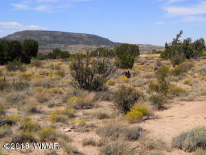Lot 102 Pinon Valley Ranch, Concho, AZ 85924