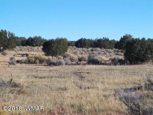Lot 159 Witch Well Ranches, CR N7210, St. Johns, AZ 85936
