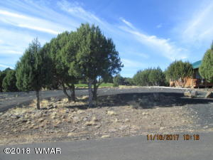 1954 Passage Drive, LK GV #48, Show Low, AZ 85901