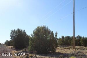 Lot 008D TBD, Concho, AZ 85924