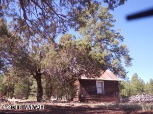 9801 Porter Mountain Road, Lakeside, AZ 85929