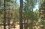 1820 N Mustang Run, Show Low, AZ 85901